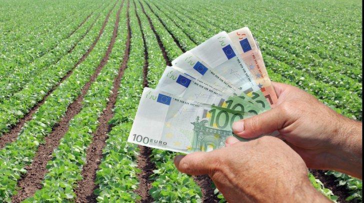 APIA a înregistrat în 2021 peste 395.000 de cereri unice de plată pentru o suprafaţă de peste 2,2 milioane de hectare de terenuri agricole